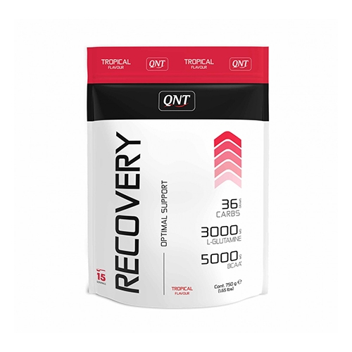 Recovery Powder (750g)