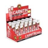 All Stars Carnitin 3000 (18x25ml) (25% OFF - short exp. date)