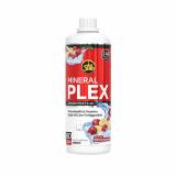 Mineral Plex Concentrate (1000ml)